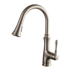 Blossom F01 204 02 Single Handle Pull Down Kitchen Faucet - Brush Nickel