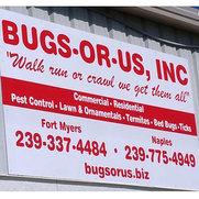 Bugs or US Incorporated's photo