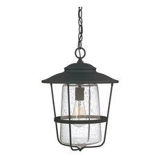 Capital Lighting 9604BK Creekside 1-Light Hanging Lantern, Black