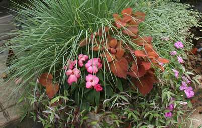 Container Garden Basics: Mix Textures to Catch the Eye
