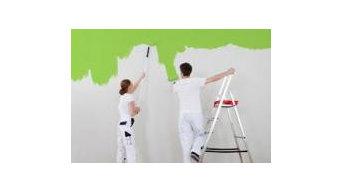 Painters Darwin