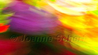 Joanne Scherf
