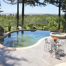Pool & Spa Combos