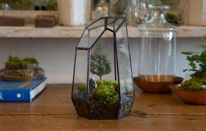 DIY : Apprenez à fabriquer un terrarium de mousse