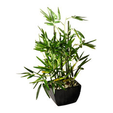 """18"""" Faux Bamboo Plant, Lush Artificial Bamboo, Pot, River Stones"""