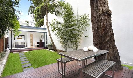 Top 10 Plants for Minimalist Gardens
