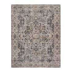 """7'6""""x9' Zaget Distressed Area Rug"""
