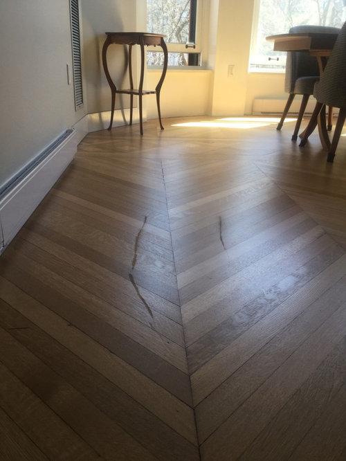 Marred Scratched Hardwood Flooring