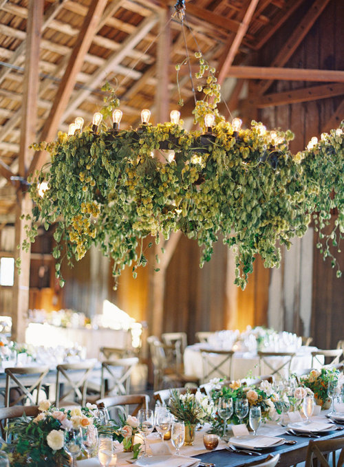 Using Ivy To Decorate My Wedding Help