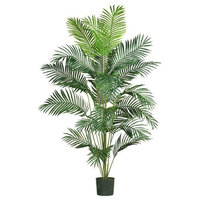 7 ft. Paradise Palm with Pot in Green