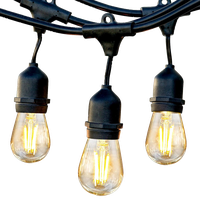 Brightech Ambience Pro - Waterproof LED Outdoor String Lights - 1W Vintage, 24 F