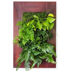 Shop Houzz: Terrariums, Living Walls and Indoor Planters