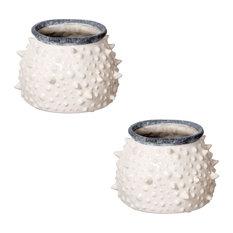 "Asmund Decorative Pot/Jar, 9""x3.5"", Set of 2"