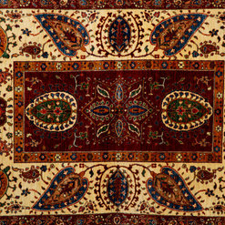 Dallamy Oriental Rugs Llc Orlando Fl