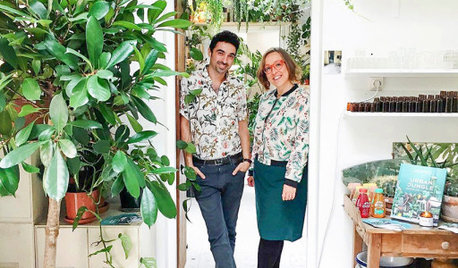 Why Millennials Love to Decorate With Plants
