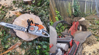 Tree Surgery and Ground Clearance Sheffield