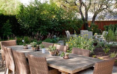 Yard of the Week: Outdoor Rooms in a Beautiful Low-Water Garden