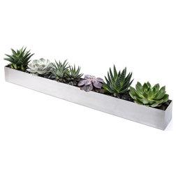 Contemporary Indoor Pots And Planters by Veradek