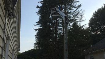 Tree Removal in Hudsonville, Michigan