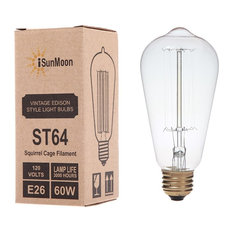 iSunMoon 60 Watt Edison Style Light Bulb, 1 Pack, Antique Edison Bulb
