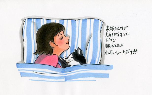 猫と私の平和な時間