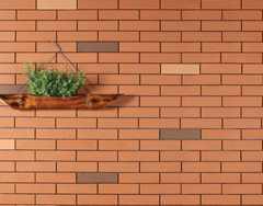 Exposed brickwark within the open kitchen, living and