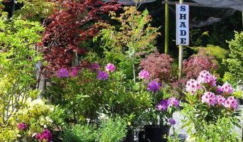 Vibrant Landscape Design