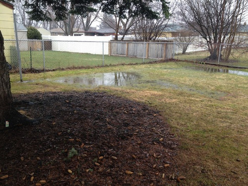 Wet backyard on ideas for small backyards, ideas for ugly backyards, ideas for muddy backyards, ideas for big backyards,