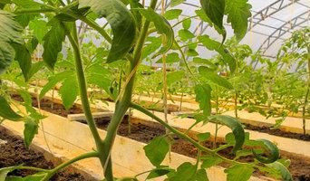 Солнечный био-вегетарий