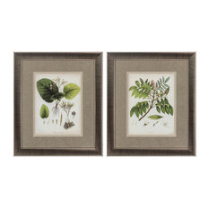 East Indian Plants, Set of 2