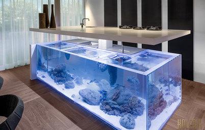 Хороший вопрос: Куда поставить аквариум