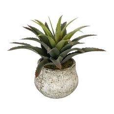 Artificial Star Succulent in Distressed White Ceramic Vase