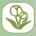 Foto di profilo di nuovo arredo verde snc
