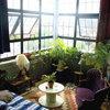 13 One-of-a-Kind Windowsill Gardens