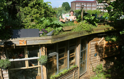 Visit London's Shed of the Year