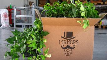 Mrhops