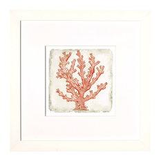 Coral in White #3 Artwork
