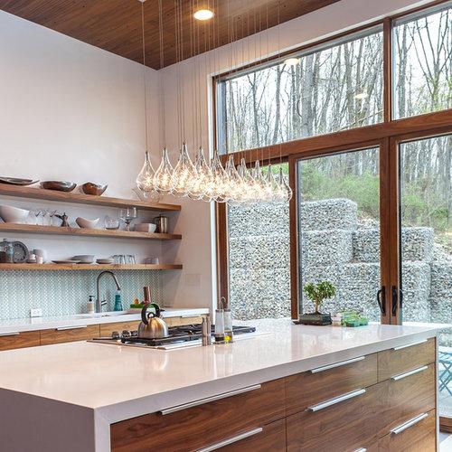 Best Contemporary Kitchen Design Ideas Remodel Pictures Houzz