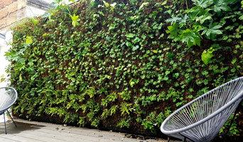 Mur végétal pour une maison d'hôtes Bordelaise