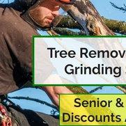 Johnson Tree Service's photo