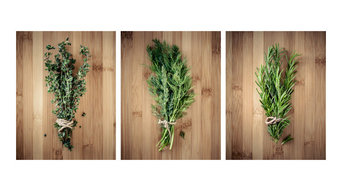 3-Piece Culinary Herbs On Bamboo, Kitchen Art Canvas, Contemporary Wall Decor