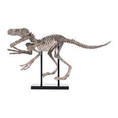 Sculpture Statue Velociraptor Skeleton Dinosaur Polyresin With Ba