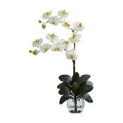 Double Phal Orchid With Vase Arrangement