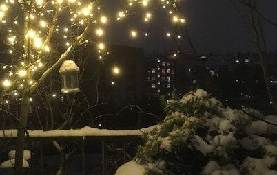 Julkänsla i trädgården: 23 tips för att dekorera utomhus