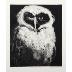 """Sylvia Roth """"Spectacled Owl"""" Etching"""