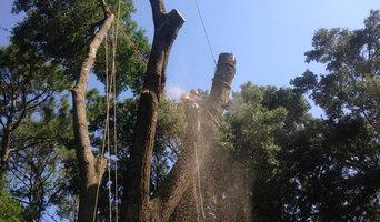 Crews Tree Service