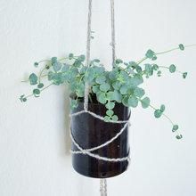 Ugens DIY: Sådan laver du selv en smart hængeplante på fem minutter