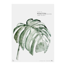 """Botanic Urban Plate 3, Monstera"" Print, Large, 50 x 70 cm"