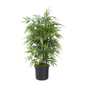 4' Bamboo Tree in Liner