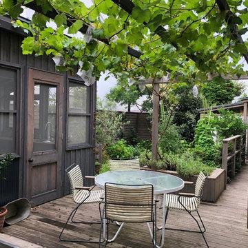 House_Suginamiku_Garden